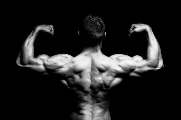 The 4-Step Biceps Builder